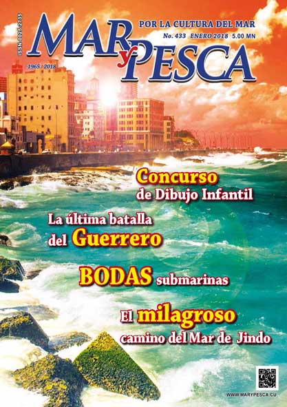 Revista Mar y Pesca. Número 433. (Ebook)