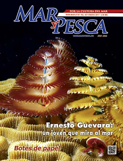 Revista Mar y Pesca. Número 427. (Ebook y Libro)