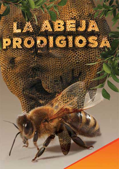 La abeja prodigiosa. (Multimedia y Ebook)